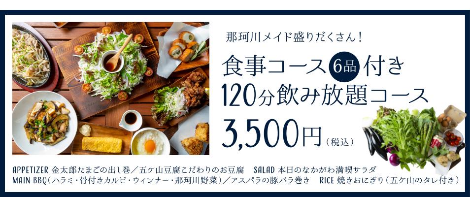那珂川メイド盛りだくさん!食事コース6品付き 120分飲み放題コース 3500円(税込)